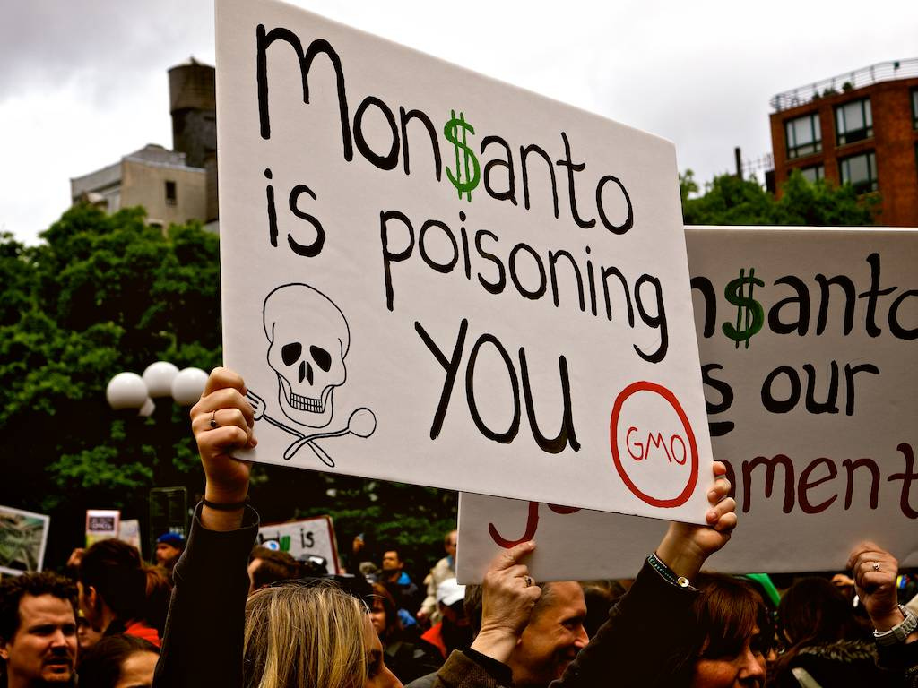 monsanto_worst_fear_gmo_greenmedinfo